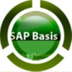 SAP Basis Support